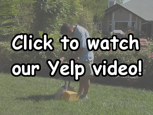 Click to watch our Yelp video!